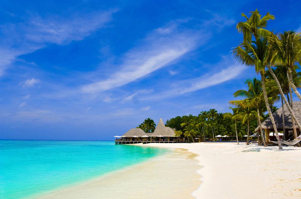 strand-mit-palmen